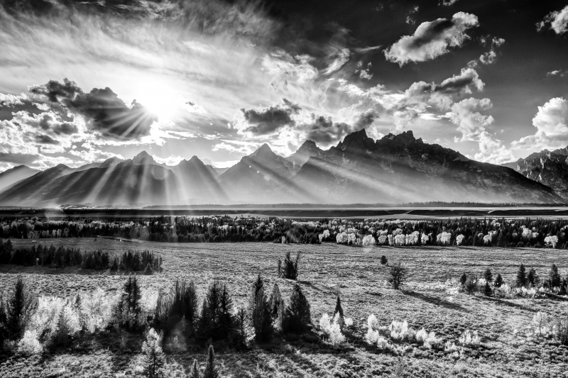Sunkissed Tetons