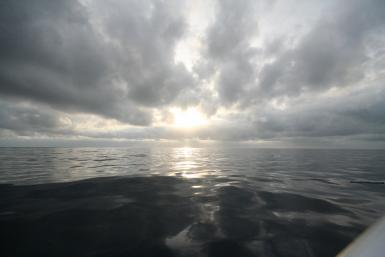 Early Morning Ocean At Rest