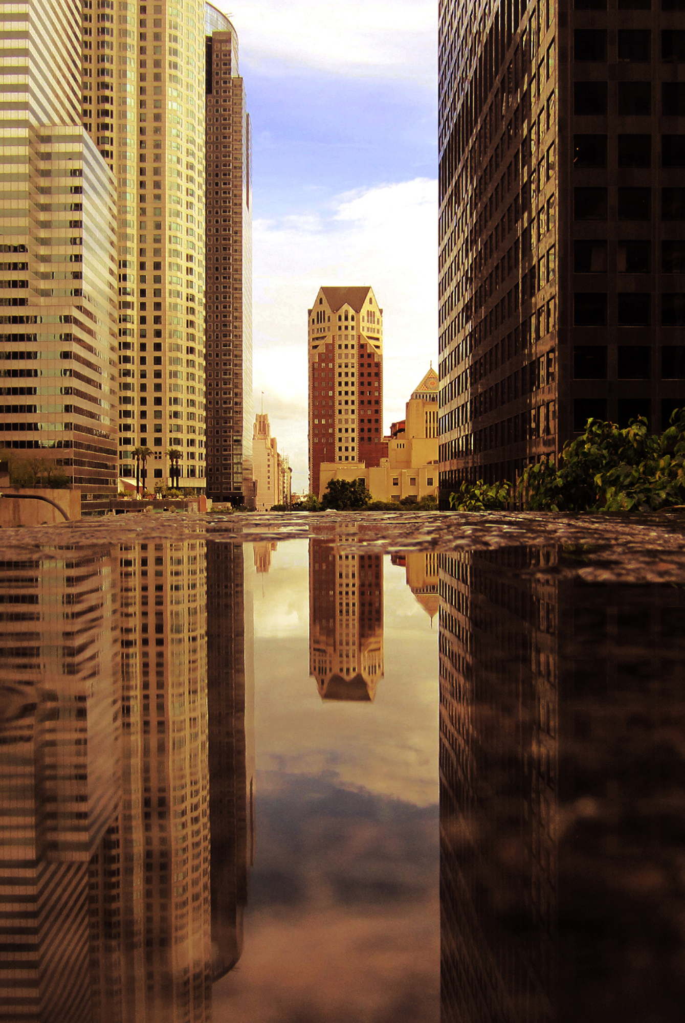 Cetywa_Powell_CityReflections