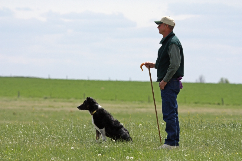 A Man And His Border Collie