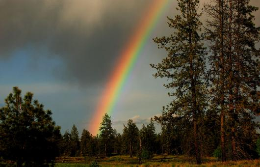 A Rainbow After A Summer Storm