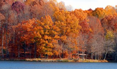 Autumn Colors At The Lake