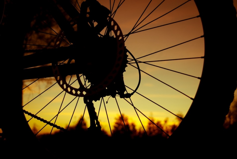 Bike Wheel Sunset