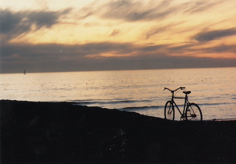 Bycicle Admiring Sunset
