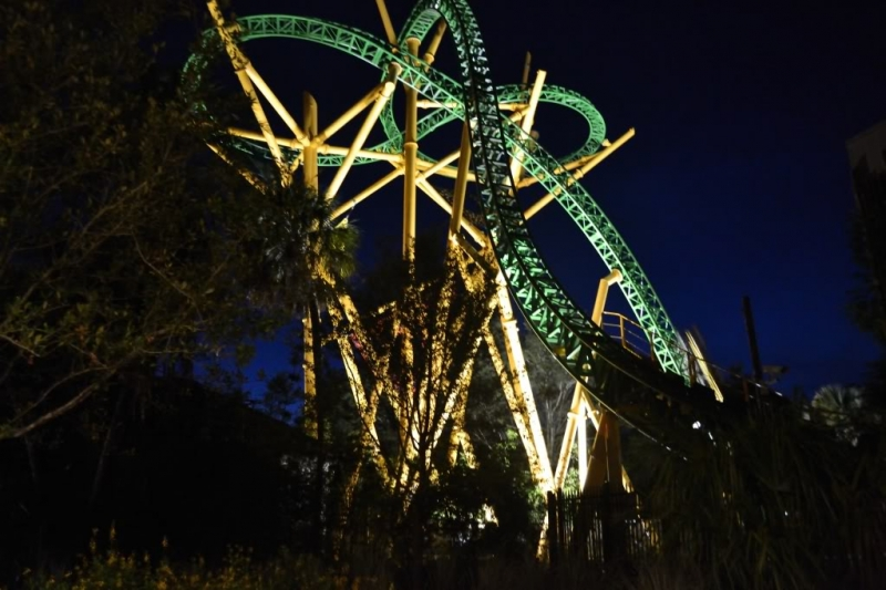 Cheetah Hunt At Night