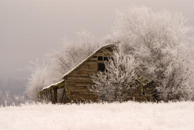 Cold Winter Barn