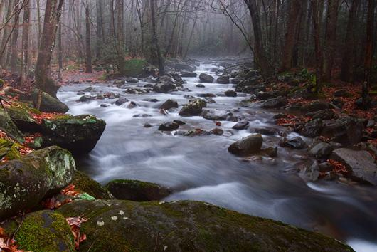 December In The Smokies