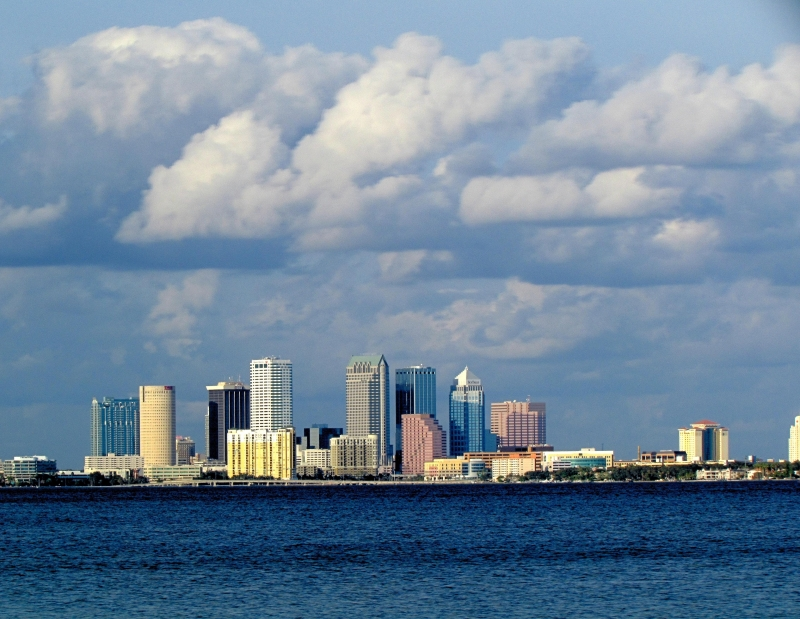 Downtown Tampa Skyline