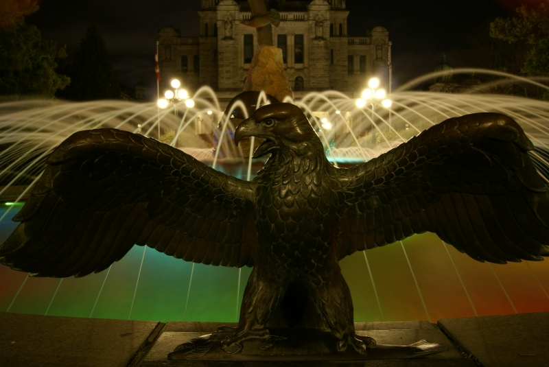Eagle And Fountain
