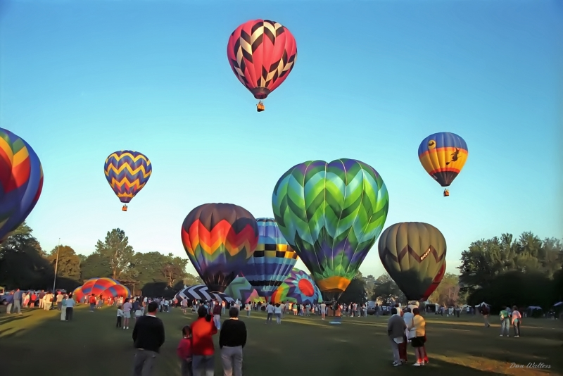 Early Morning Mass Hot Air Balloon Launch