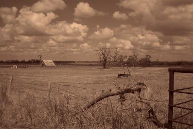 East Texas Farm Bonham