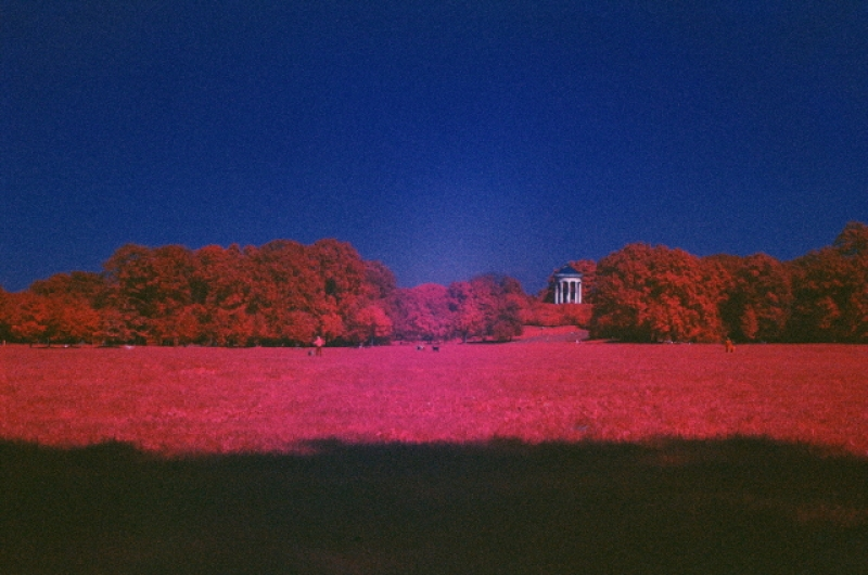 English Garden In Infrared