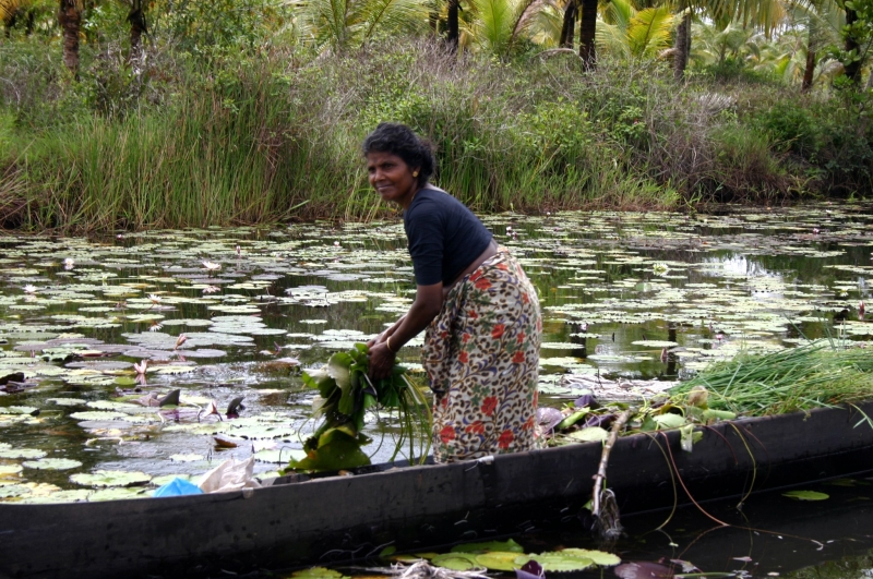 Fisherwomen Portrait In Kerela – India