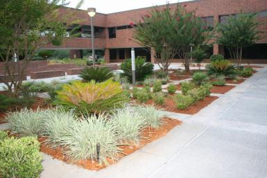Florida Community College Kent Campus