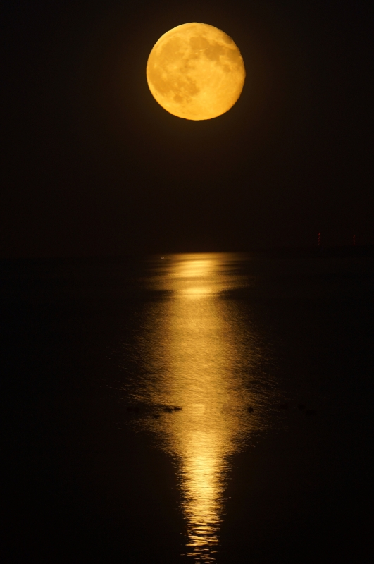 Full Moon Over Michigan