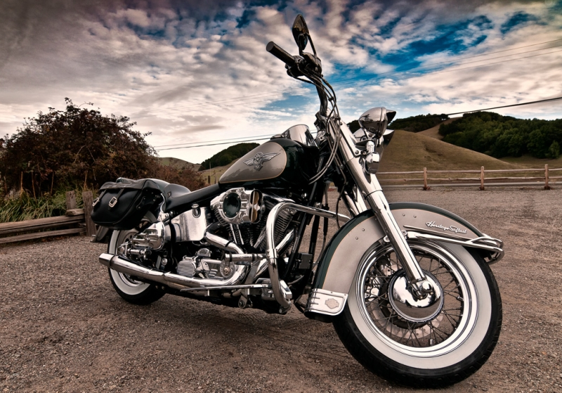 Harley Softail Near The Seashore