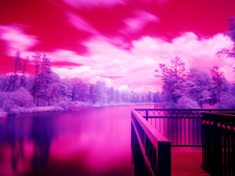 Ir Lake View