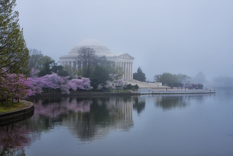 Jefferson Memorial (cherry Blossom Festival)