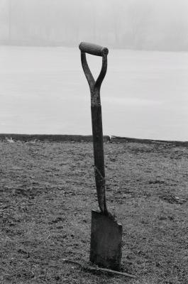 Lake Shovel