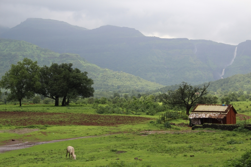 Landscape In Monsoon