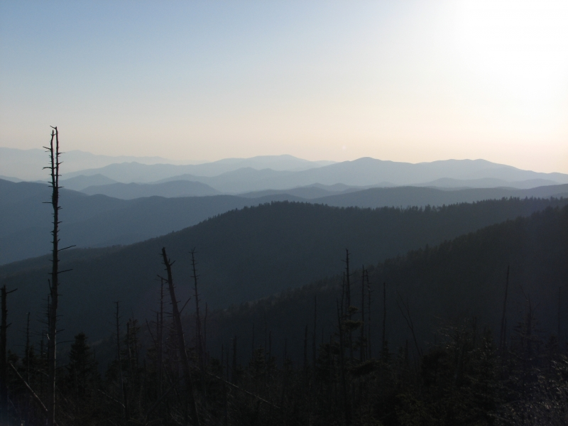 Late Afternoon In The Smokies