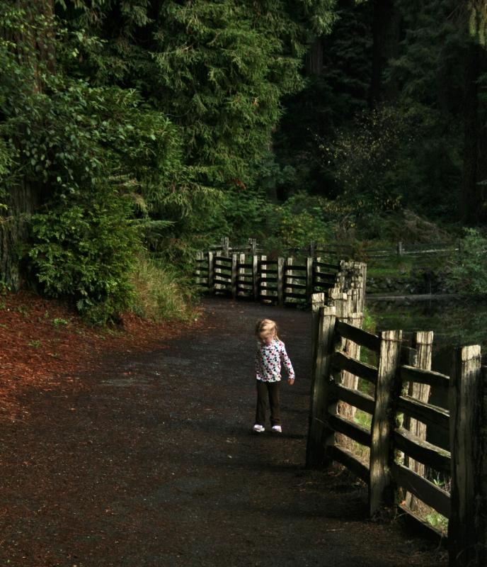 Little Girl, Big Path