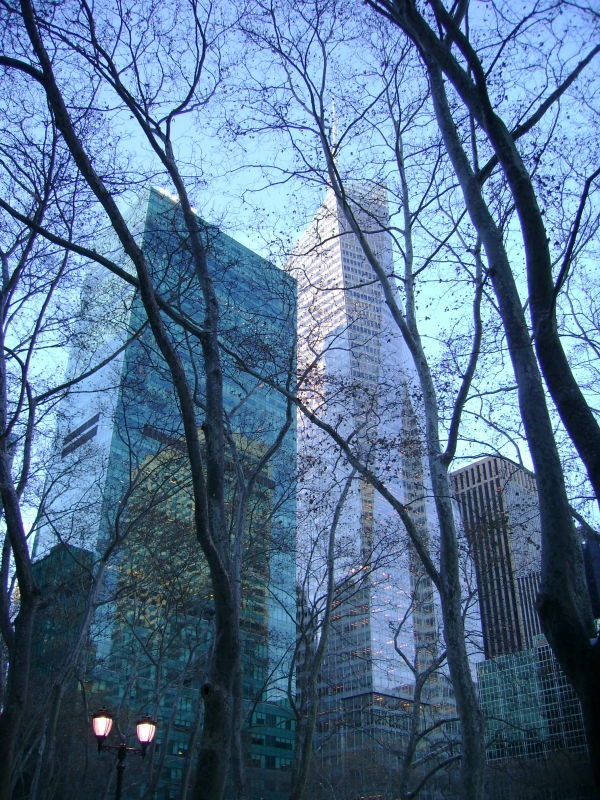 Manhattan Through The Trees #7