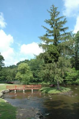 Milham Park In Summer