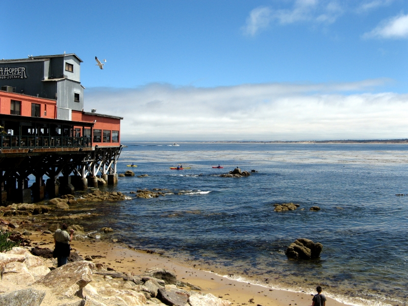 Monterey Afternoon