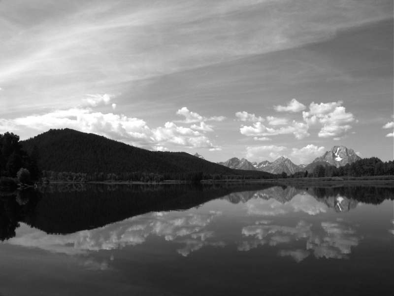 Mt Moran Reflected