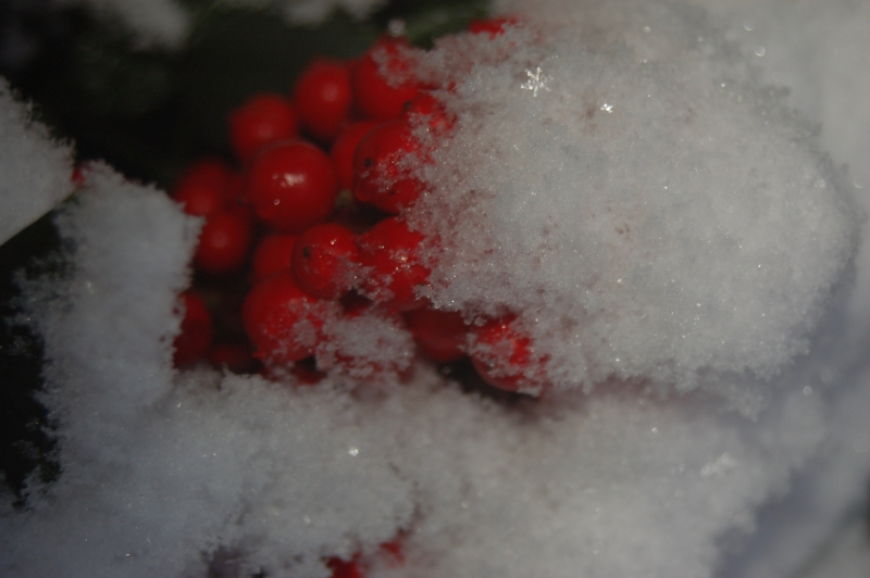 Nandina With A Snowflake