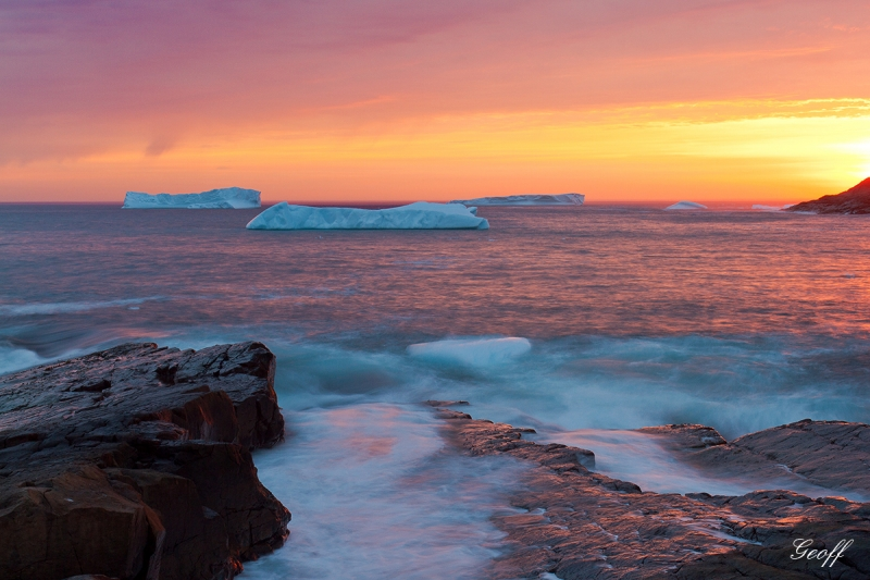 Newfoundland Icebergs At Sunrise
