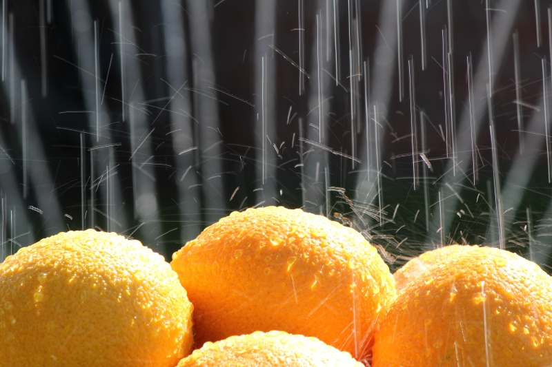 Oranges In The Rain