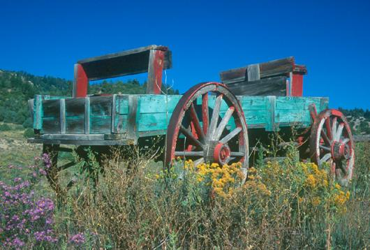 Painted Wagon