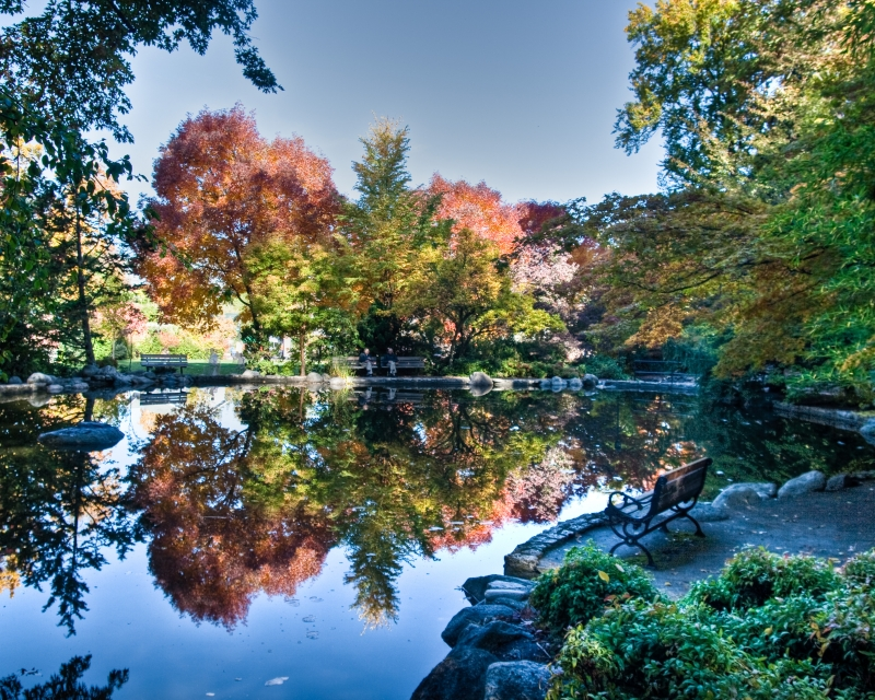 Reflections In Lithia Park