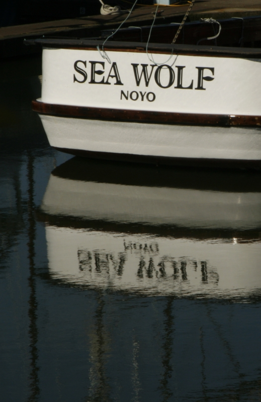Sea Wolf Reflected