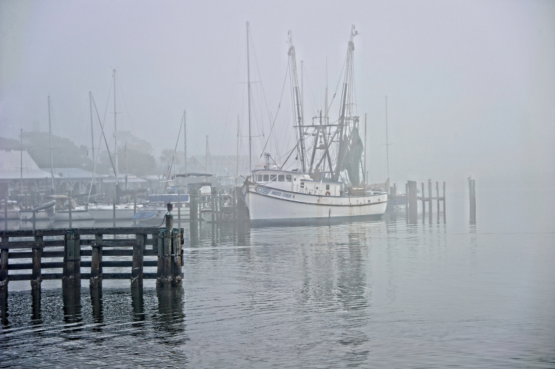 Shrimp Boat In Fog