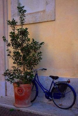 Siena Bicycle