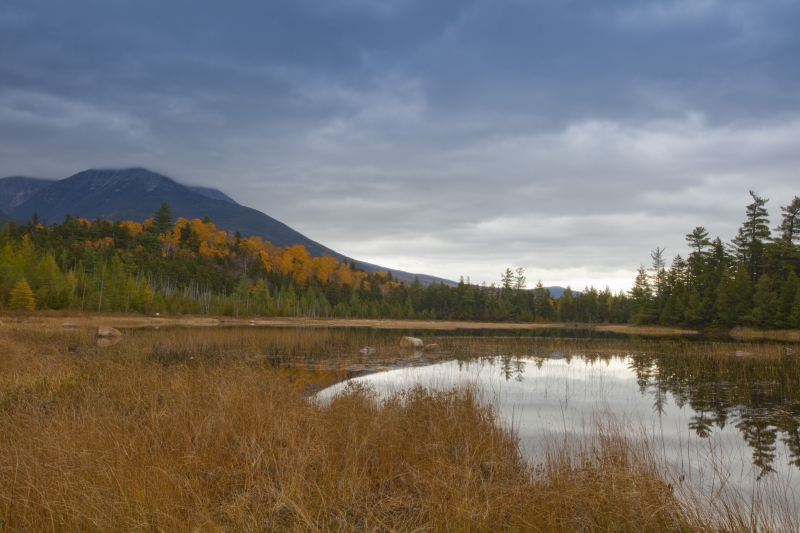 Small Pond Baxter State Park Maine