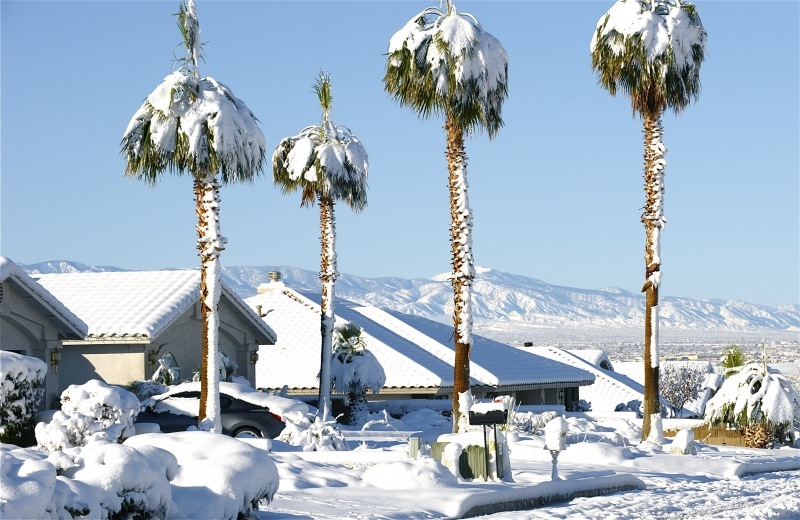 Snow In The High Desert