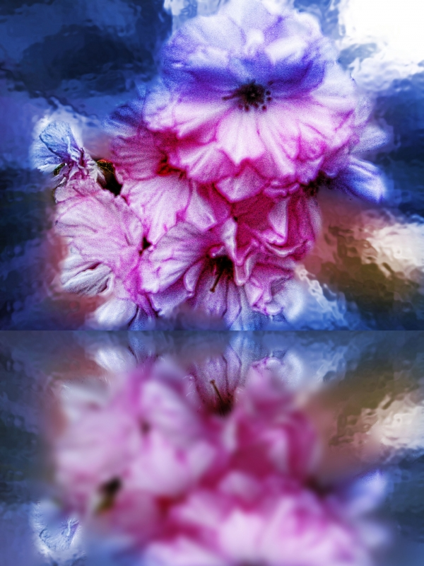 Spring With Photoshop