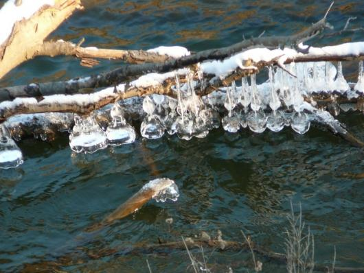 Susquehanna River Ornaments
