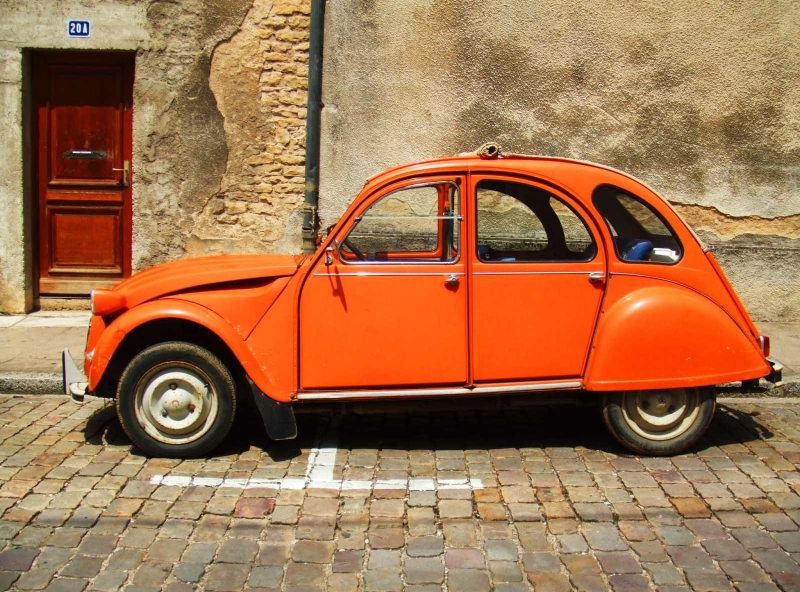 The Burnt Orange Bug
