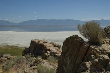 The Great Salt Lakes