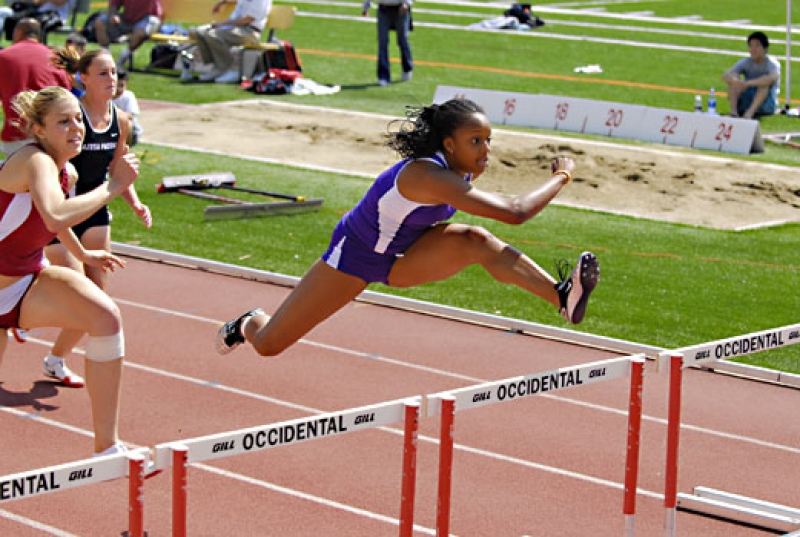 The Hurdle