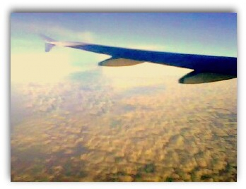 View From Flight