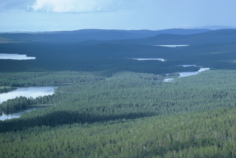View From Joenkielinen