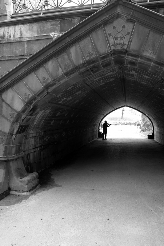 Violinist At The Archway