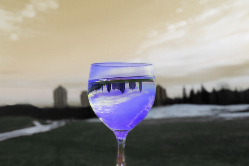 Wine Glass Picture #1
