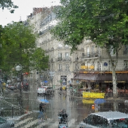 Rainy Parisian Summer